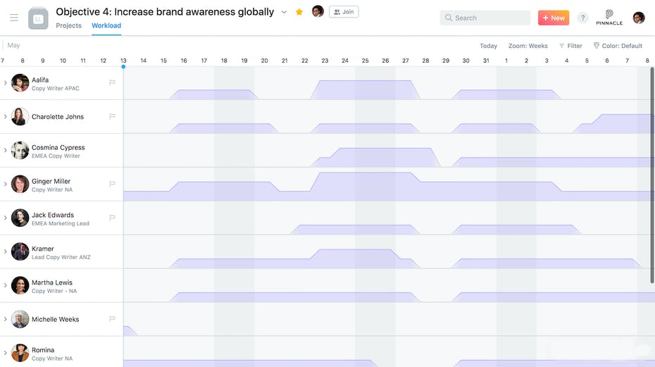 Asana Capacity Planning Screenshot